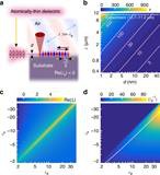 Phonon Properties of SiC Wafer
