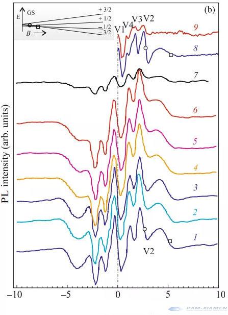 Magnetic field(mT)