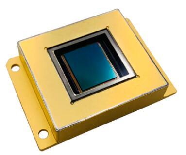 InGaAs Sensor Image